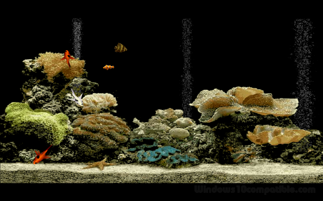 Free aquarium screensaver 1 0 free download for Fish tank screen